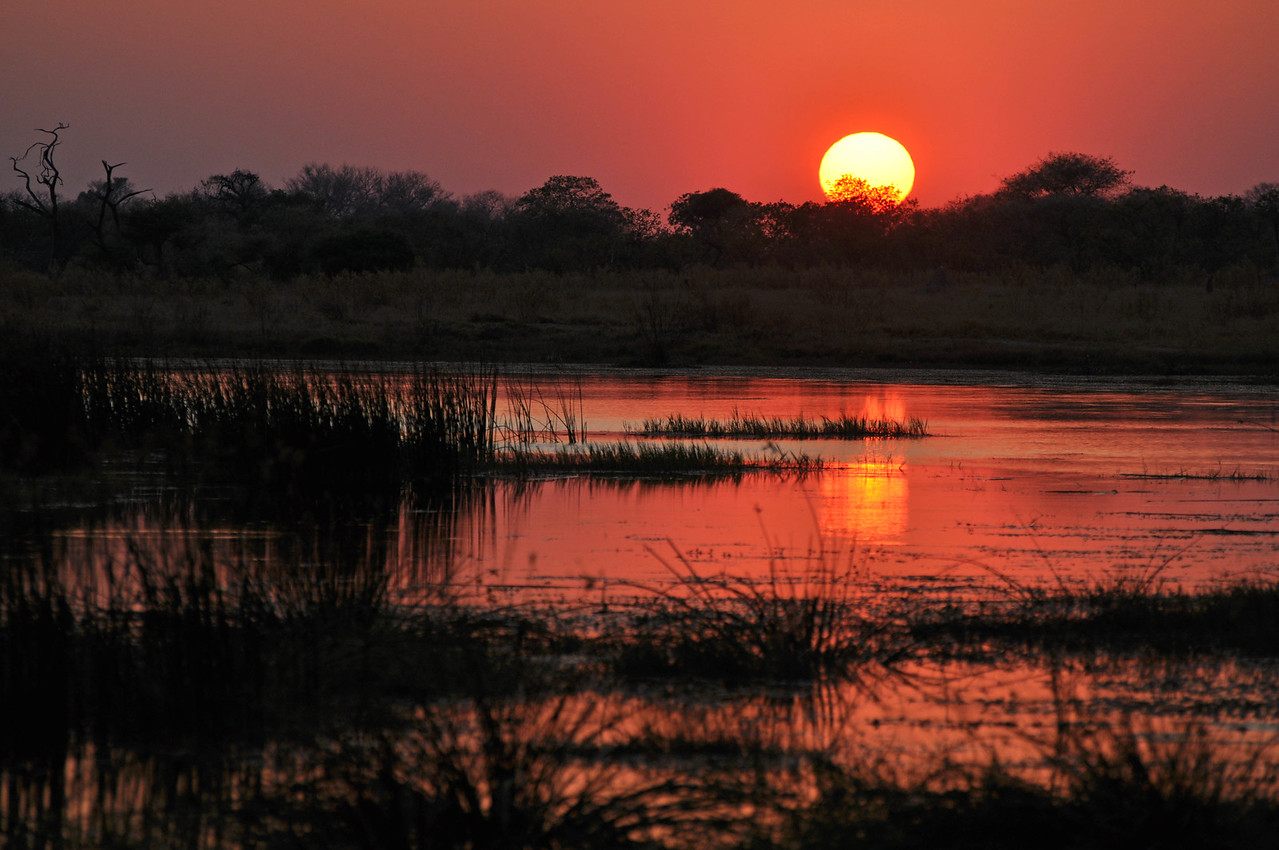Sunrise over the Okavango Delta near Third Bridge campsite in the Moremi Game Reserve<br /> <br /> The sunrises - always so beautiful that they make getting up so early so worthwhile. We never watch as many consecutive sunrises as we do when we are on safari.