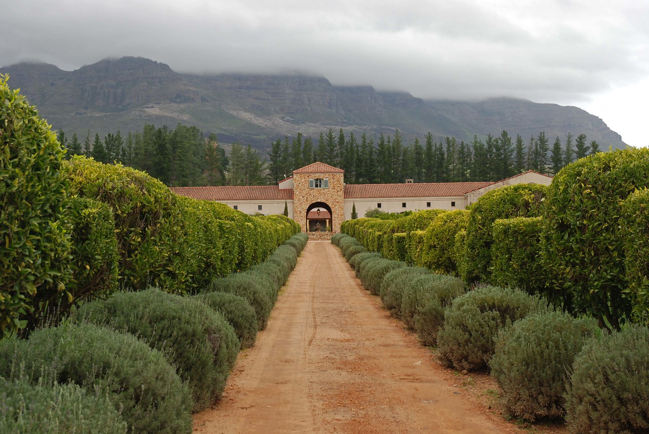 The entrance to Waterford Estate<br /> <br /> From Morgenster, we headed to the Waterford Estate in the picturesque Blaauwklippen Valley, which offers the unique and decadent combination of wine and chocolate tasting. It is a beautiful estate, with rolling lawns, citrus groves, and immaculate gardens featuring wonderfully fragrant lavender beds.