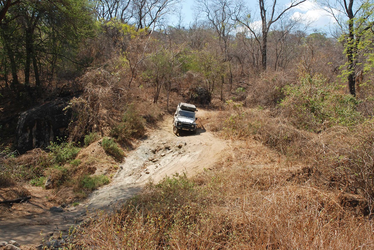 One of the easier stretches of Leopard's Hill Road - a good test of Robert's 4x4 skills<br /> <br /> <br /> MORE HIGHLIGHTS<br /> <br /> The stretch of road dropping off the escarpment and into the Lower Zambezi valley was a good test of our (well, Robert's actually!) 4x4 skills and the Land Rover. The road was so poor that we stopped at one point to debate whether we could possibly be on the correct road and where we thought we were. We began to doubt the GPS - both of them! Picture a narrow, dirt track with loose gravel, large rocks and wide, deep trenches from run-off during the wet season. In one particularly challenging section, envision that same track tipped down at an alarming angle, then crossing a narrow riverbed before climbing up immediately at the same steep angle on the opposite bank. It took us several tries to get up the steep hill on the far side of the riverbed. I was beginning to envision us spending the night in the riverbed - it actually would have been quite a pretty camping spot.  The most memorable drive of the trip!