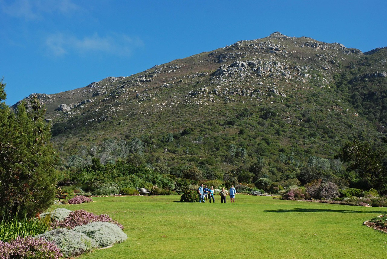 Enjoying the view from Kirstenbosch Gardens<br /> <br /> Kathy and Jim are avid gardeners, so a visit to Kirstenbosch National Botanical Gardens was a logical stop on their Cape Town tour.