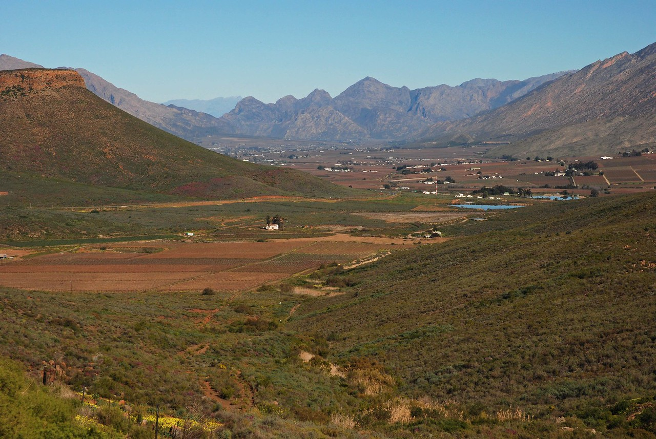 View of the Hex River Valley from the lookout where we enjoyed morning tea - note the flowers on the slopes of the mountains<br /> <br /> We stopped for tea at a viewpoint overlooking the valley, enjoying the pink, yellow and orange flowers that covered the surrounding hills.
